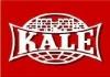 Reparatii usi cu yale sau broaste Kale